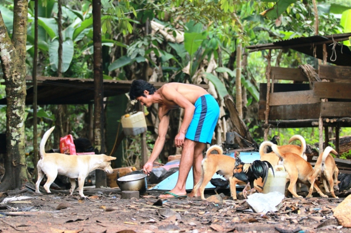 Penduduk Desa Merambang, Kabupaten Lamandau sedang memberi makan anjing peliharaannya, beberapa waktu lalu. Dinas Pertanian Peternakan dan Perikanan Lamandau rutin melakukan vaksinasi terhadap anjing mencegah rabies. BORNEONEWS/DOK
