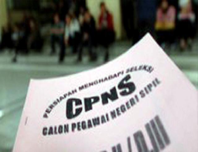 Ilustrasi CPNS.