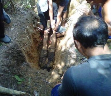 Tubuh Nurwahyudi terseret ke dalam lobang-sarang Trenggiling hingga hanya terlihat lutut-betis dan telapak kakinya saja.