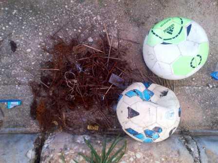 BOLA DAN PAKU : Dua buah bola bocor akibat terkena paku. Para pemain berhasil mengumpulkan paku beserta kawat yang ditemukan para pemain bola yang bermain di lapangan Stadion Swakarya, Sabtu (14/1/2016).