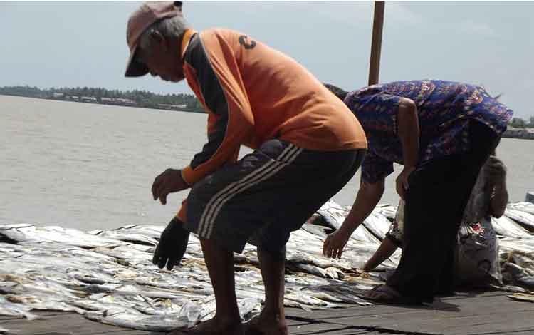 Seorang nelayan Desa Sungai Undang saat menjemur ikan di lokasi Pangkalan Pendaratan Ikan (PPI) Kuala Pembuang. Saat ini sejumlah nelayan mengaku hasil tangkapan mereka kembali menurun karena besarnya gelombang laut. BORNEONEWS/PARNEN