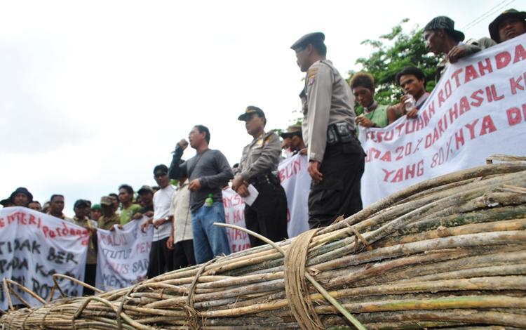 Para petani, pengumpul, dan pengusaha rotan di Kabupaten Kotim, saat berdemonstrasi menuntut pencabutan Permendag No.35 Tahun 2011 tentang Larangan Ekspor Rotan Mentah dan Setengah Jadi, di depan kantor DPRD setempat, beberapa waktu lalu. BORNEO/M. RIFQI