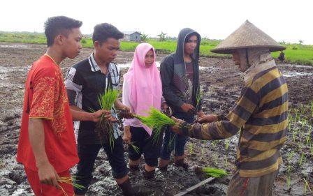 Robert (kanan) sedang mengajari anak muda Sabuai menanam padi. BORNEONEWS/YOHANES WIDADA