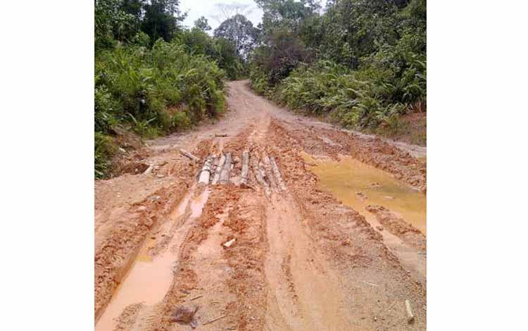 Kondisi jalan menuju Desa Sungai Dau, dari Rantau Pulut Seruyan. BORNEONEWS/RADEN ARYO