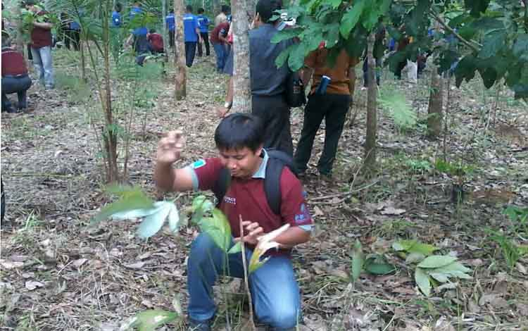 Gunawan, dari komunitas Desainer Rotan Cirebon (Radec) menanam batang rotan di Desa Tumbang Liting, Selasa (25/10). BORNEONEWS/ABDUL GOFUR
