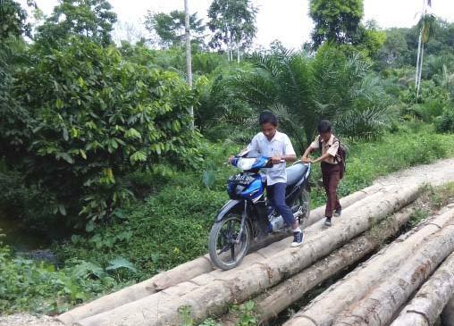 Di Bartim Masih Ada Jembatan Gunakan Batang Kelapa