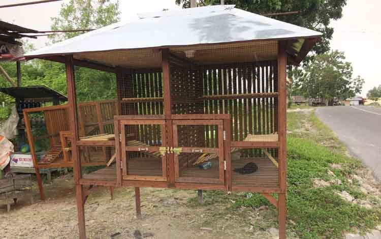 Perajin Kandang Kucing Kebanjiran Order