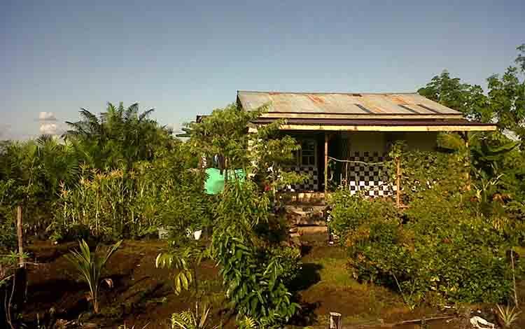 UPT Hiyang Bana Kecamatan Tasik Payawan Kabupaten Katingan.