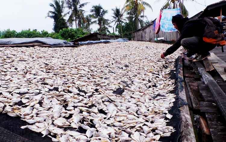 Potret Desa Tanjung Putri Sebagai Sentra Olahan Hasil Perikanan