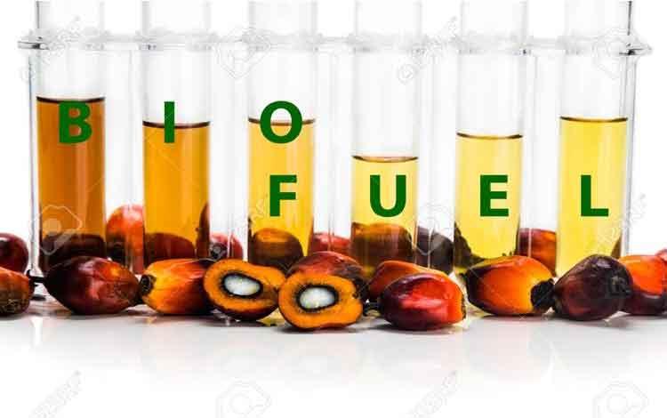 Pebisnis Sawit Desak Pemerintah Sikapi Petisi Biodiesel AS