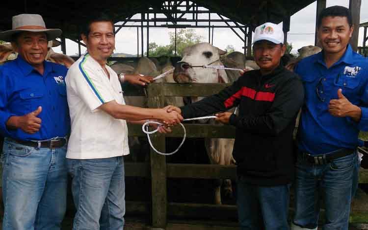 Koordinator CSR CBI Group Kharis Nuryanto menyerahkan secara simbolis hewan kurban kepada kepala desa Natai Baru, Amat Jamli, Senin (29/8/2017).