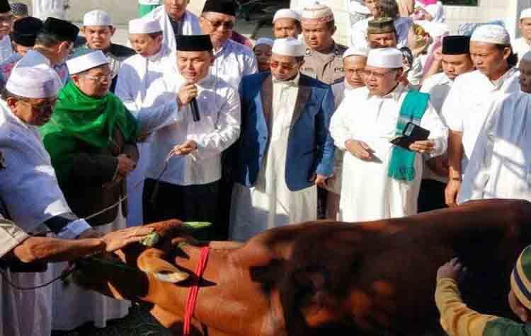 Gubernur Kalteng, Sugianto Sabran menyerahkan sapi kurban kepada pengurus masjid di Kota Palangka Raya, Jumat (1/9/2017)