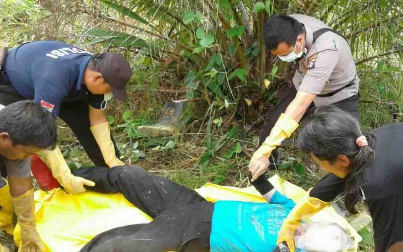Karyawan Sawit Ditemukan Tewas, Diduga Pascadisengat Lebah