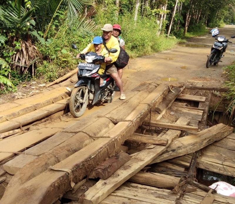 4 Jembatan Penghubung Antarprovinsi Kalteng-Kalsel Rusak Parah