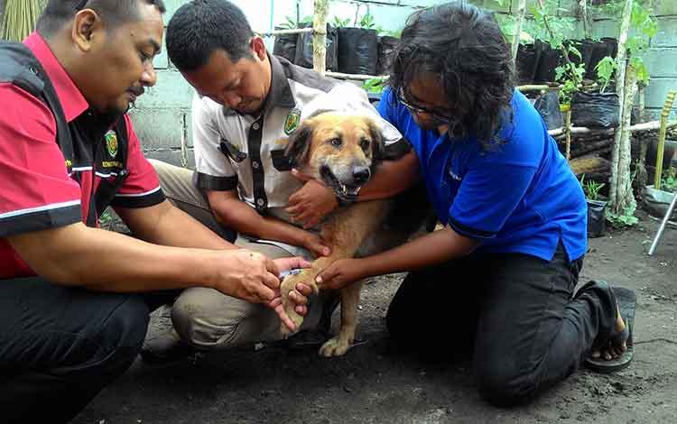 Vaksin rabies di Palangka Raya.