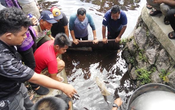 Tim Emergency Response Palangka Raya bersama aparat kepolisian dibantu warga berupaya menangkap buaya yang muncul di selokan air, Jalan Junjung Buih III, Kelurahan Langkai, Kecamatan Pahandut, Minggu (7/1/2019).