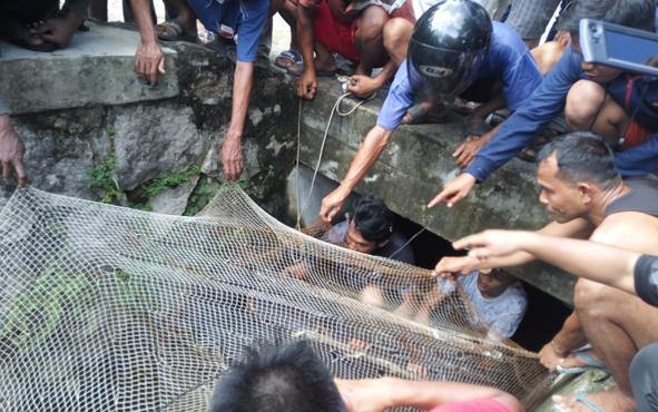 Tim pemburu buaya di Jalan Junjung Buih III, Kota Palangka Raya, menggunakan jaring untuk menangkap buruan mereka, Minggu (6/7/2019).
