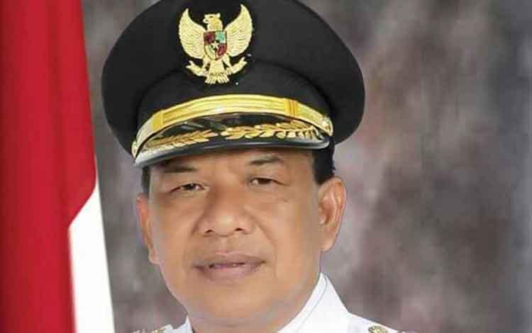 Wakil Bupati Sukamara, Ahmadi