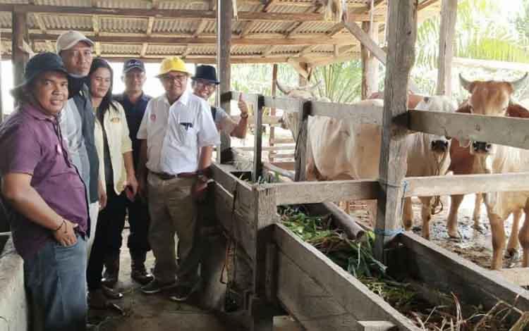 Regional Head 2 SSMS Group, Rudi  Yanto Sirait, saat menyerahkan bantuan program plasma sapi kepada kelompok tani Brahman Jaya Desa Bukit Jaya, Kecamatan Bulik Timur, Lamandau, Sabtu (9/2/2019).