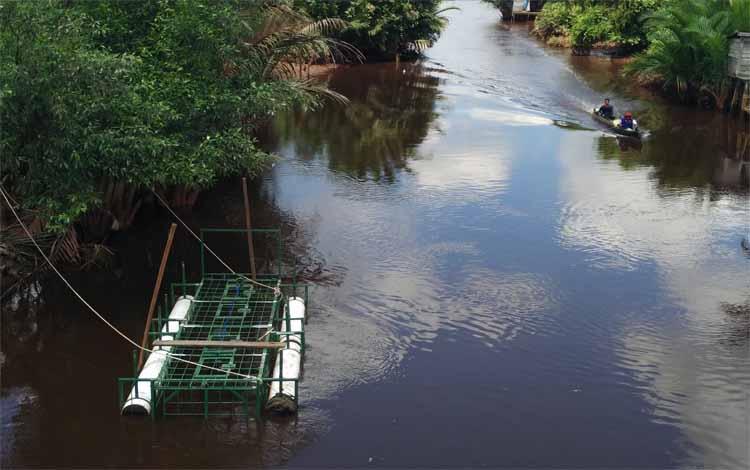 Perangkap buaya yang terpasang di Sungai Seranggas akan dibongkar, karena saat ini sudah tidak terlihat kemunculannya