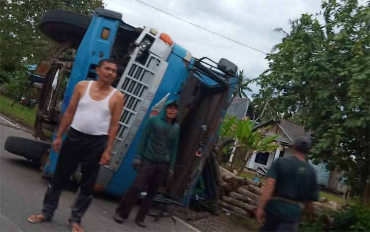 Truk fuso pengangkut kayu sengon terguling di Jalan Trans Kalimantan Kecamatan Basarang, Rabu (13/3/2019)
