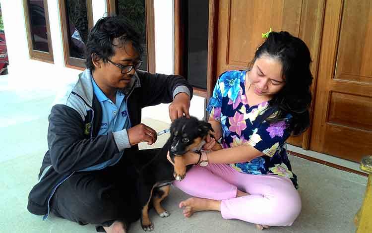 Petugas memberikan vaksin rabies untuk hewan peliharaan di Palangka Raya.