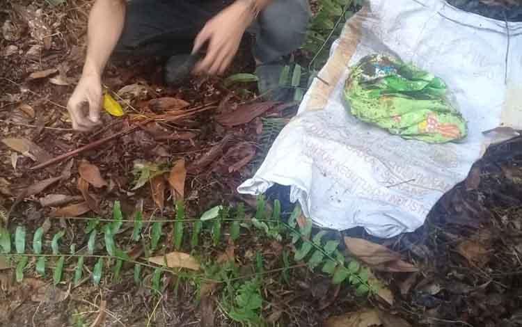 Lokasi bayi yang diaborsi oknum mahasiswa dikubur.