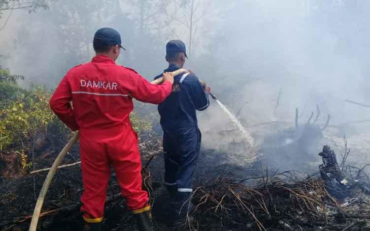 Kebakaran Hutan dan lahan di Kota Palangka Raya tahun lalu.