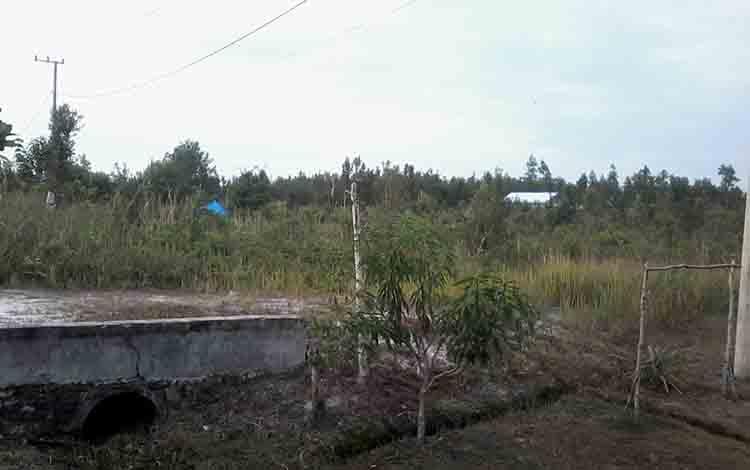 Lahan tepi Jalan Soekarno - Hatta Kasongan sejauh ini banyak diperkualbelikan, namun warga belum bisa mengurus SKT.