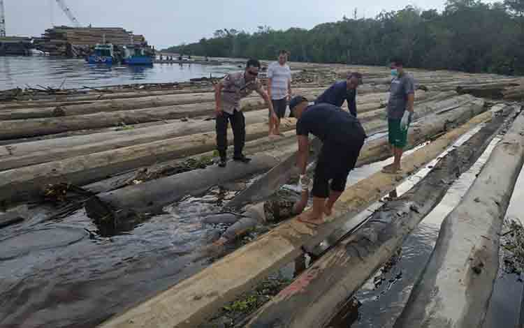 Jasat korban saat pertama kali ditemukan menyangkut di rakit kayu di Sungai Katingan Desa Tewang Kampung