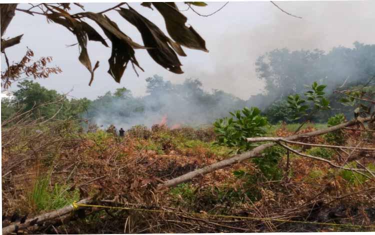 Api sempat muncul di lahan kawasan Km 9 Palangka Raya