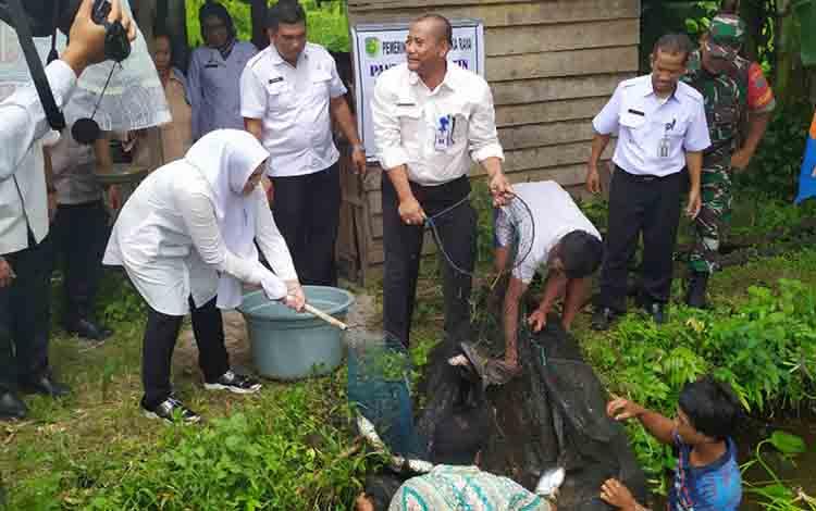 Wakil Wali Kota Palangka Raya, Umi Mastikah (kerudung putih) saat ikut memanen ikan, di Kelurahan Tumbang Tahai, Kecamatan Bukit Batu, pada Rabu, 3 Juli 2019.