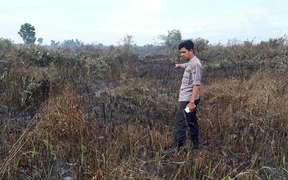 Polisi menunjukkan lahan yang dibakar warga berinisial WR, Kamis, 4 Juli 2019.