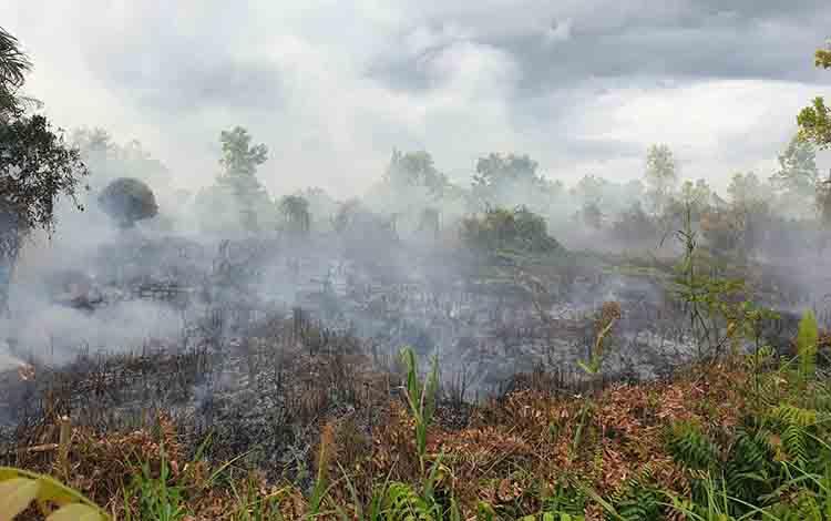 Kebakaran lahan yang terjadi beberapa waktu lalu.