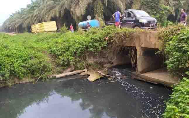 Limbah yang mencemari Sungai Sampit terus mengalir dan tidak jauh dari Desa Pondok Damar.
