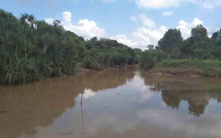 Sungai Sampit yang tercemar akibat limbah sawit.