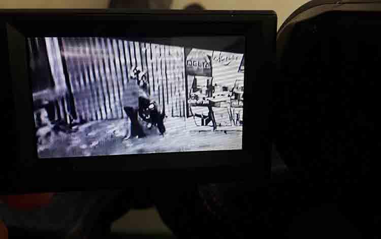 Pencuri lampu hias terekam CCTV pemilik ruko di Jalan Tarmili, Kelurahan Raja, Pangkalan Bun