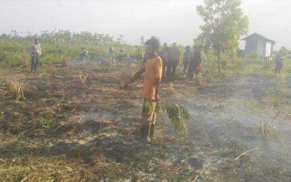 Seorang warga berinisial NN diamankan polisi karena kedapatan sedang membakar lahan, Selasa, 6 Agustus 2019.