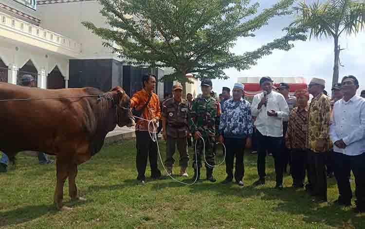 Penyerahan secara simbolis sapi kurban kepada pengurus Mesjid Agung Al Istiqlal Kota Puruk Cahu, Kamis, 8 Agustus 2019