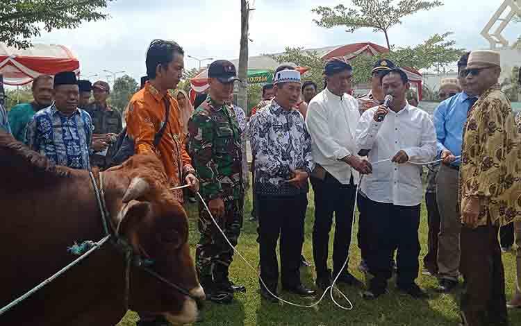Wakil Ketua I DPRD Murung Raya, Likon saat menyerahkan sapi kurban milik perusahaan kepada pengurus Mesjid AgunG Al Istiqlal Kota Puruk Cahu.