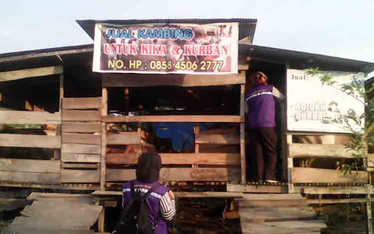 Dinas Ketahanan Pangan dan Pertanian Kabupaten Sukamara saat memeriksa kesehatan hewan kurban