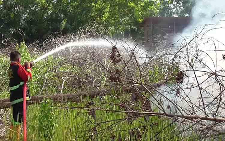 Proses pemadaman kebakaran hutan dan lahan di Kota Palangka Raya