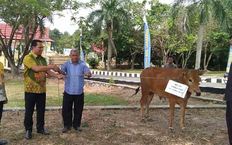 Bupati Lamandau H Hendra Lesmana didamping Wabup Riko Prwanto dan Ketua DPRD Lamandau saat menyerahkan hewan kurban kepada pengurus Masjid Awwaliyah, Nanga Bulik, Ujang Mardali.