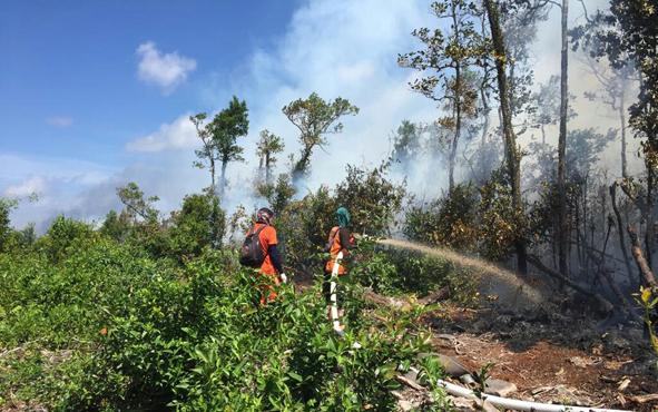 Kebakaran lahan di wilayah Desa Sungai Bakau, Kecamatan Seruyan Hilir Timur, Kabupaten Seruyan.