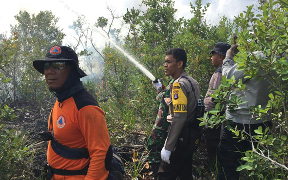 Upaya pemadaman api oleh anggota Satgas Karhutla.