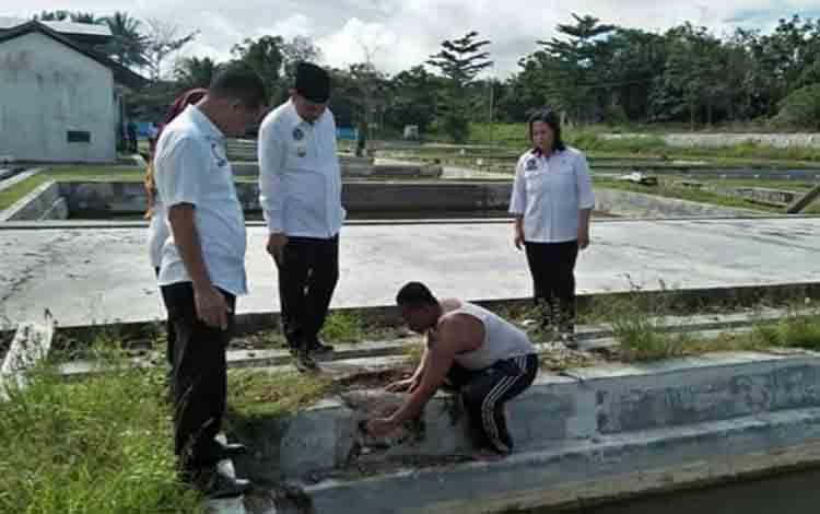 Bupati Sukamara, Windu Subagio saat berkunjung ke BBI Dusung Terantang, Desa Natai Sedawak