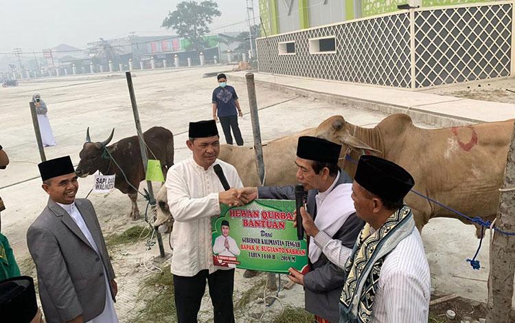 Sekda Kalteng Fahrizal Fitri menyerahkan bantuan sapi kurban dari Gubernur Kalteng Sugianto Sabran