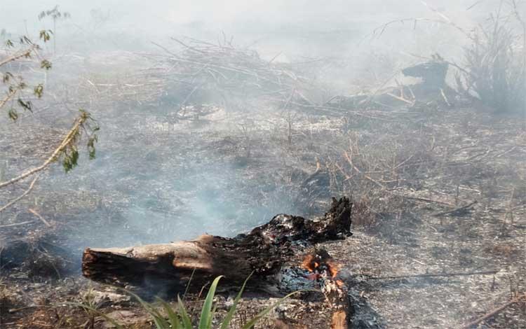 Kebakaran lahan terjadi di Palangka Raya