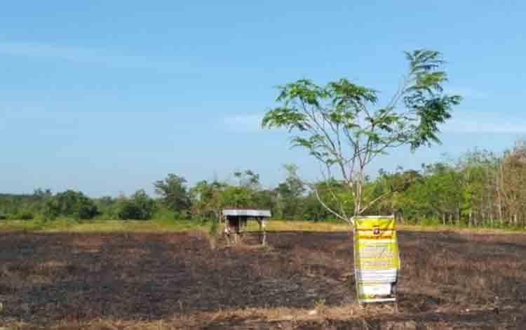 Lahan yang terbakar milik SL di Desa Gandang.