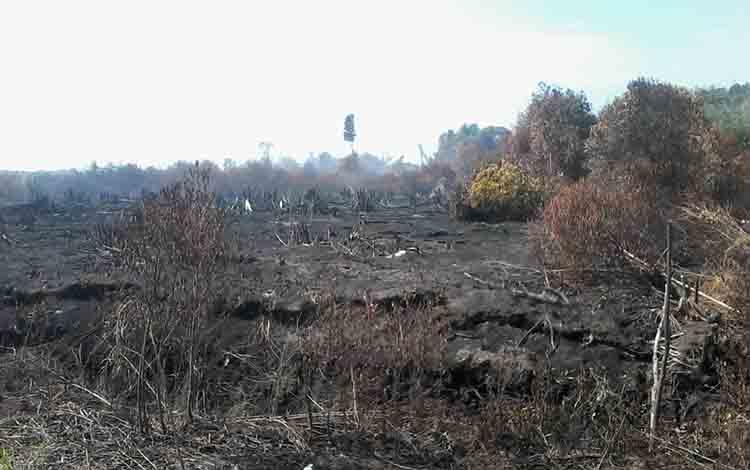 Lahan arah jalan menuju Desa Talian Kereng yang terbakar.